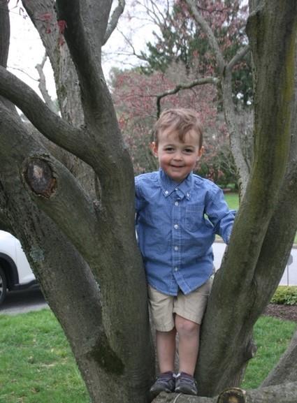 JR Tree Easter 2 IMG_7127